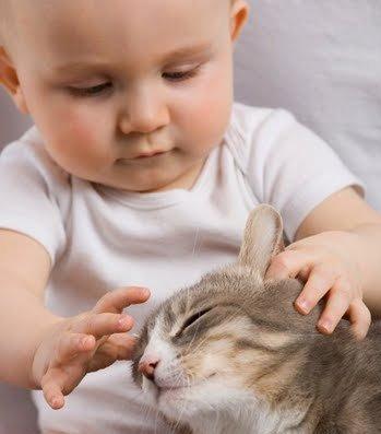 Дети и кошки. Новорожденный ребенок и кошка. Ребенок и кошка в доме.