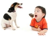 Собака в доме с ребенком