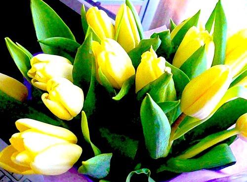 Порадуйте жену цветами