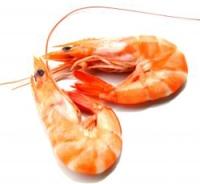 Морепродукты в детском питании