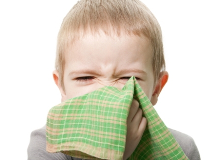 Избавиться от аллергенов и вздохнуть с облегчением