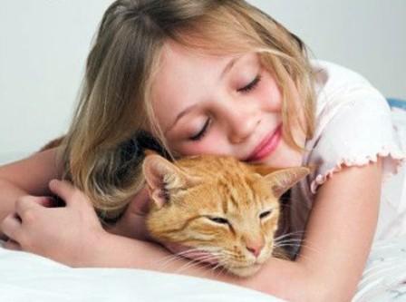 Почему дети любят кошек