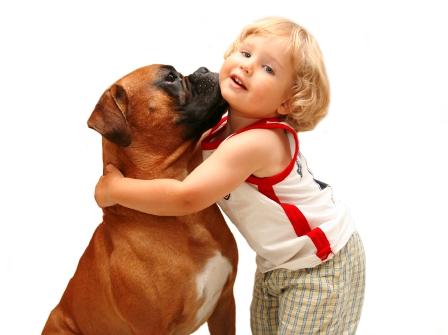Как выбрать собаку для ребенка