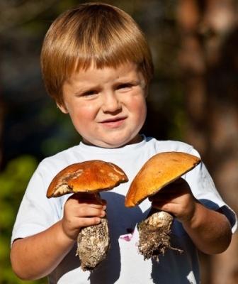 Можно ли детям есть грибы?