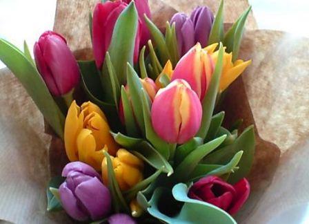 Сколько цветов дарить на 8 марта?