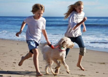 Ребенок и домашние питомцы