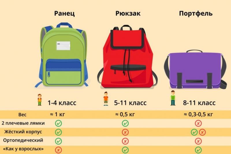 Инфографика: как правильно выбирать рюкзак для школьников.