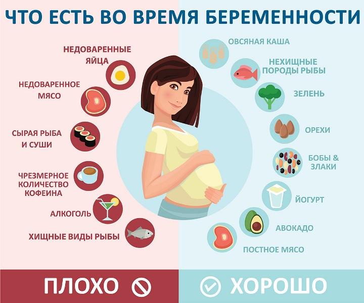 На плакате показано, какие продукты можно и нельзя беременным